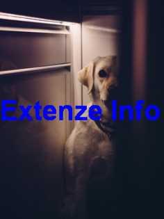 Extenze Ingredients List