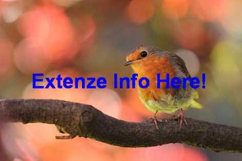 Do Extenze Actually Work