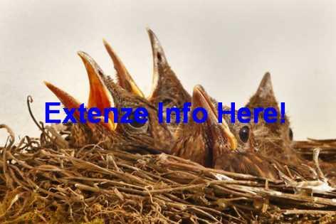 Extenze Maximum Strength Side Effects
